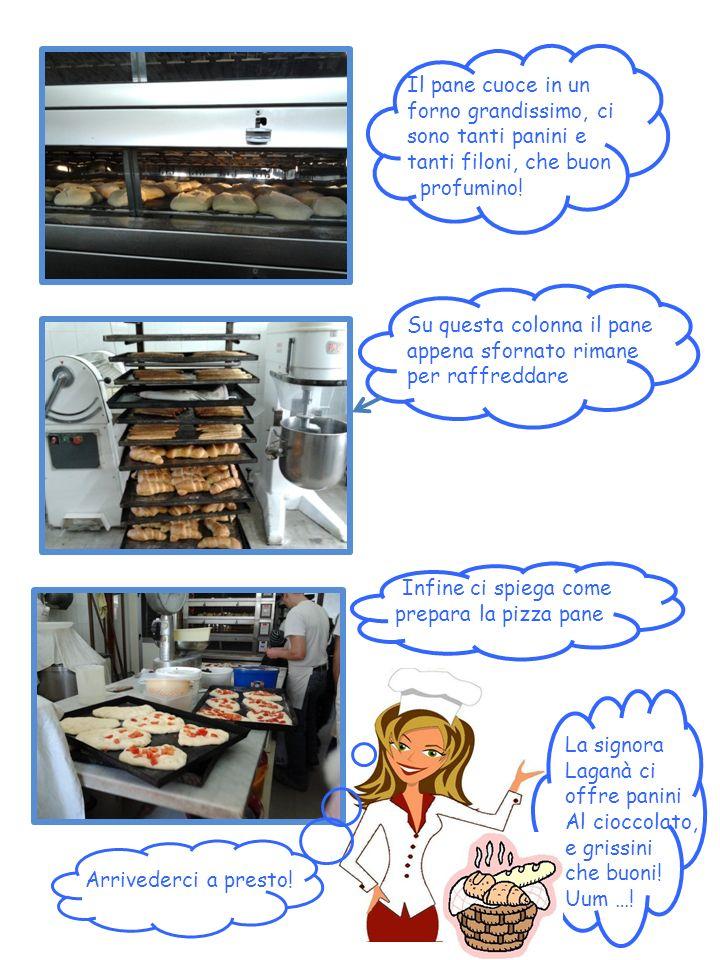 Il pane cuoce in un forno grandissimo, ci sono tanti panini e tanti filoni, che buon profumino! Su questa colonna il pane appena sfornato rimane per r