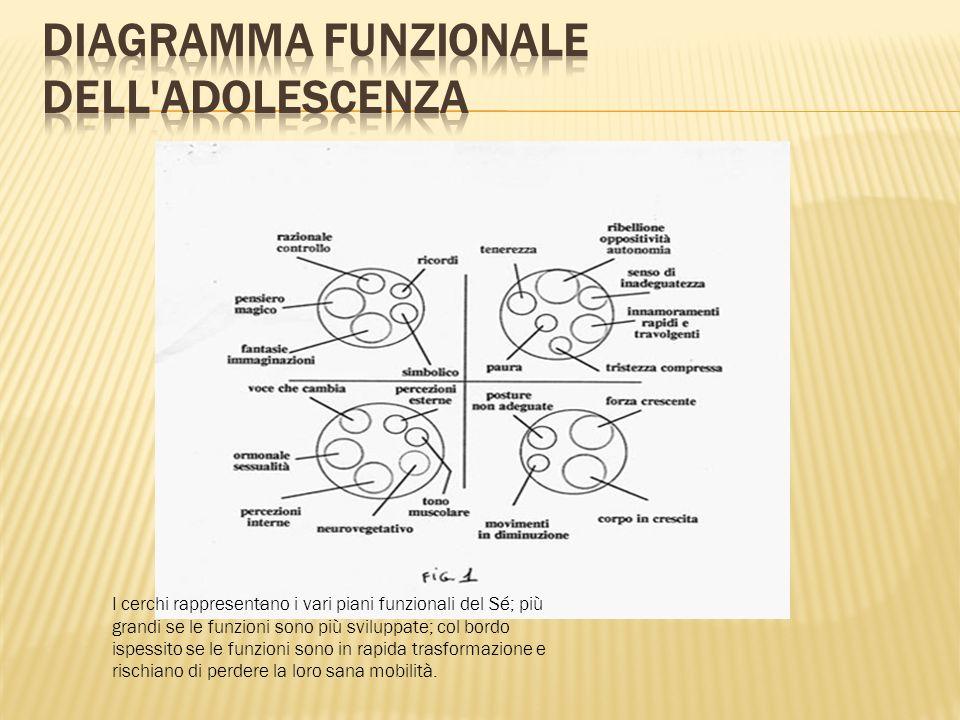 I cerchi rappresentano i vari piani funzionali del Sé; più grandi se le funzioni sono più sviluppate; col bordo ispessito se le funzioni sono in rapid