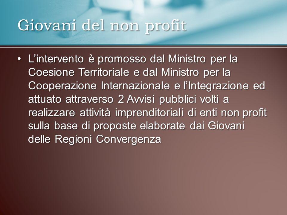 Lintervento è promosso dal Ministro per la Coesione Territoriale e dal Ministro per la Cooperazione Internazionale e lIntegrazione ed attuato attraver