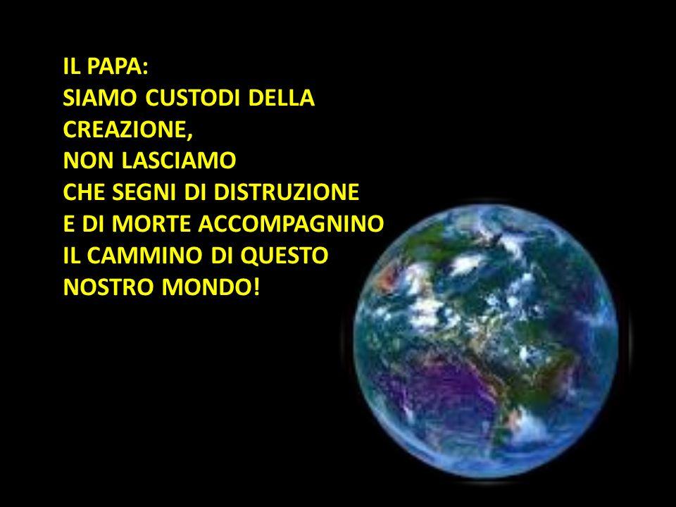 Città del Vaticano, 19 marzo 2013 (VIS). Il testo integrale dell'omelia che Papa Francesco ha tenuto durante la Messa di inizio del Ministero Petrino.