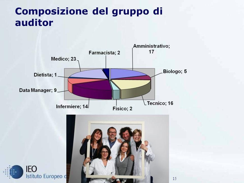 Composizione del gruppo di auditor 15