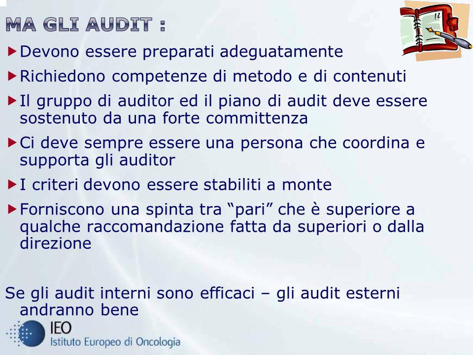 Devono essere preparati adeguatamente Richiedono competenze di metodo e di contenuti Il gruppo di auditor ed il piano di audit deve essere sostenuto d
