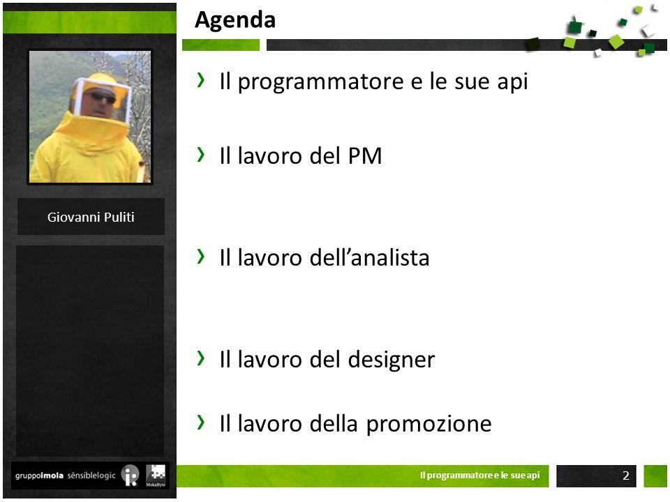 Agenda IL LAVORO DEL PM Project management PID Scomposizione strutturale del progetto Organizzazione Strumentario Il programmatore e le sue api 13