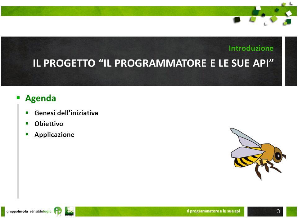 Agenda IL PROGETTO IL PROGRAMMATORE E LE SUE API Introduzione Genesi delliniziativa Obiettivo Applicazione Il programmatore e le sue api 3