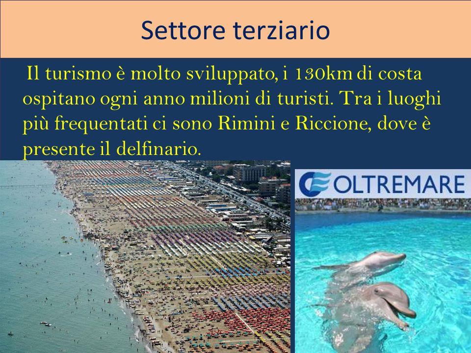 Settore terziario Il turismo è molto sviluppato, i 130km di costa ospitano ogni anno milioni di turisti. Tra i luoghi più frequentati ci sono Rimini e