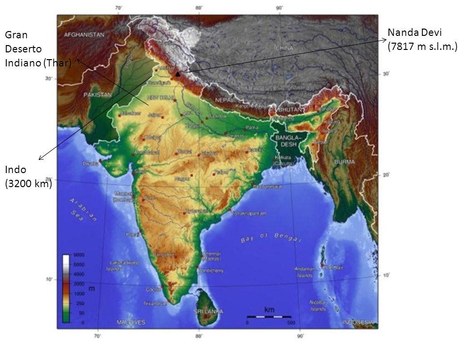 Nanda Devi (7817 m s.l.m.) Gran Deserto Indiano (Thar) Indo (3200 km)