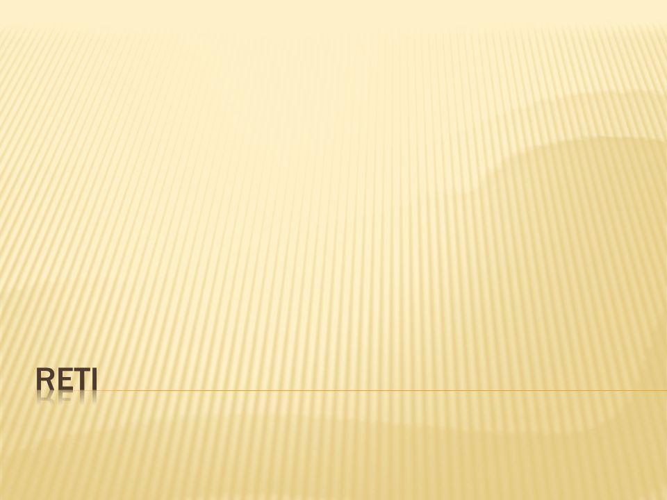 I vantaggi che si hanno nell operare un approccio a strati sono: riduzione della complessità nella costruzione di architetture protocollari introducendo livelli di astrazione; indipendenza per l operatività e le strutture interne di ogni strato; ogni strato deve compiere un compito diverso dagli altri e la sua struttura non è vincolata da quella degli altri livelli; interazione tramite servizi; i livelli sono disposti a pila, uno sopra l altro.