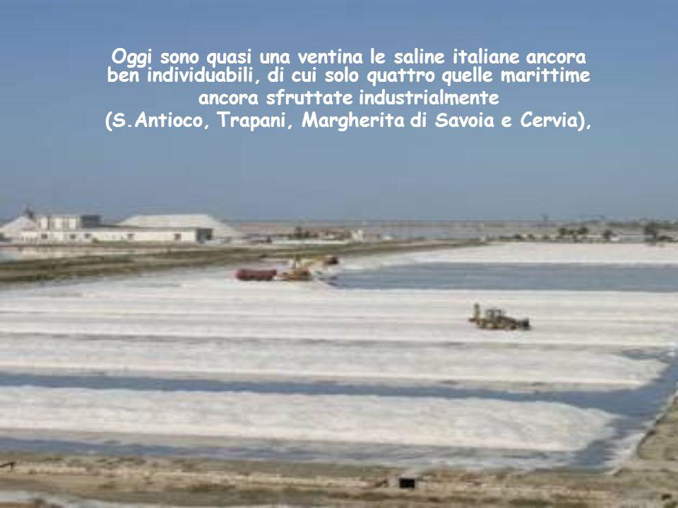 Oggi sono quasi una ventina le saline italiane ancora ben individuabili, di cui solo quattro quelle marittime ancora sfruttate industrialmente (S.Antioco, Trapani, Margherita di Savoia e Cervia),