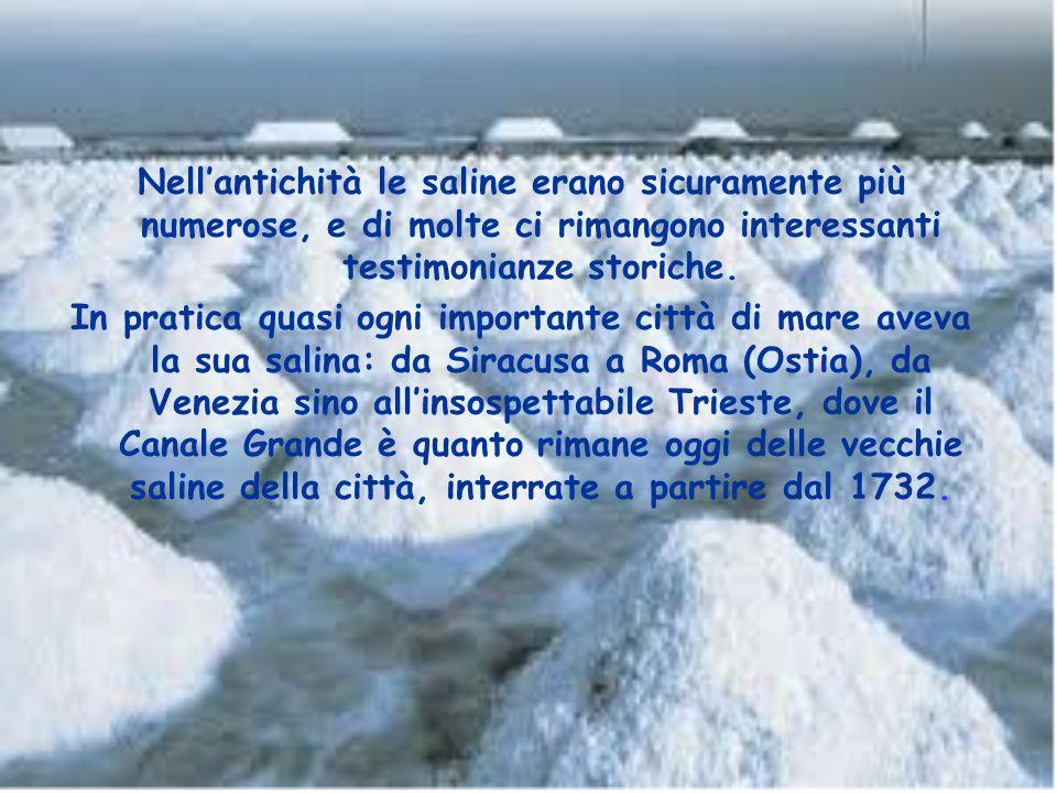 Oggi sono quasi una ventina le saline italiane ancora ben individuabili, di cui solo quattro quelle marittime ancora sfruttate industrialmente (S.Anti