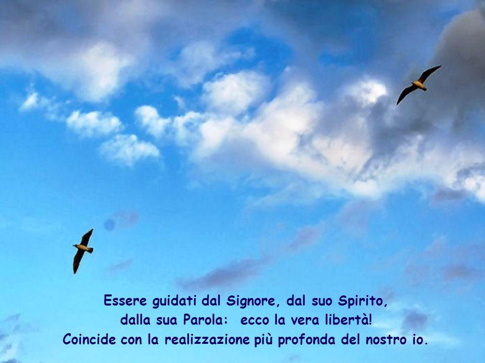 È lo stesso Signore che, grazie allo Spirito Santo, viene a vivere e ad agire in noi, facendoci Vangelo vivo.