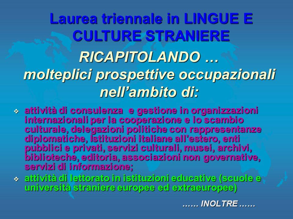attività di consulenza e gestione in organizzazioni internazionali per la cooperazione e lo scambio culturale, delegazioni politiche con rappresentanz