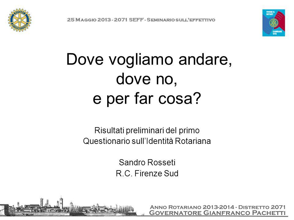 25 Maggio 2013 - 2071 SEFF - Seminario sull'effettivo Dove vogliamo andare, dove no, e per far cosa? Risultati preliminari del primo Questionario sull