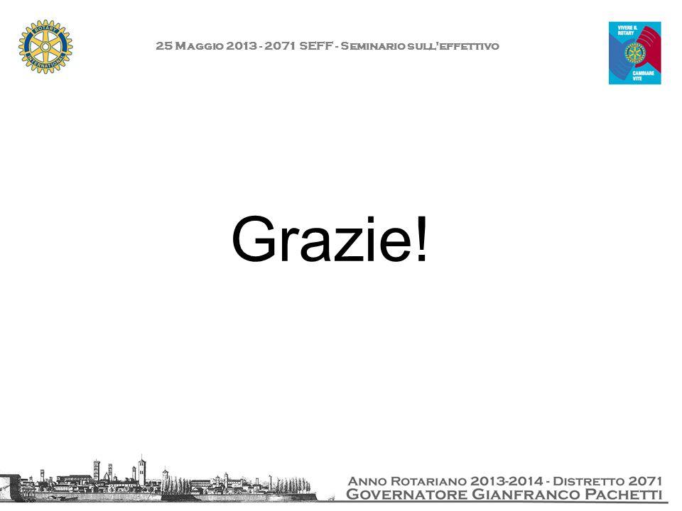 25 Maggio 2013 - 2071 SEFF - Seminario sull'effettivo Grazie!