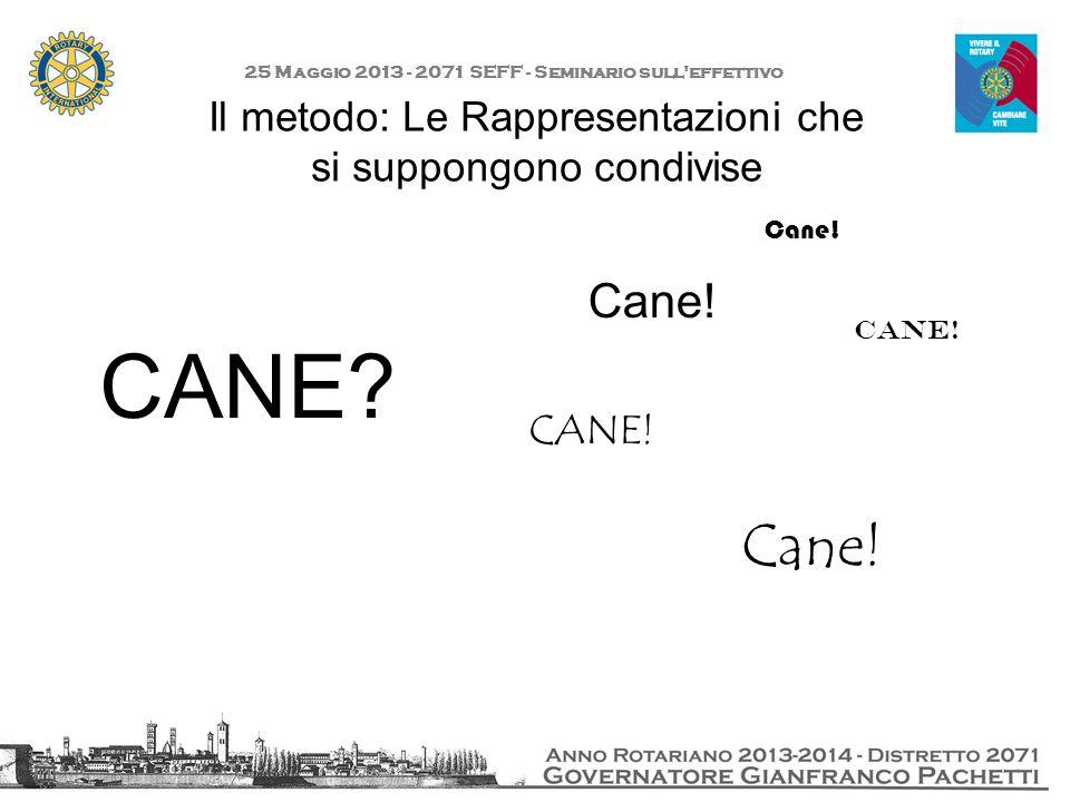 Il metodo: Le Rappresentazioni che si suppongono condivise 25 Maggio 2013 - 2071 SEFF - Seminario sull'effettivo CANE? Cane! CANE! Cane!
