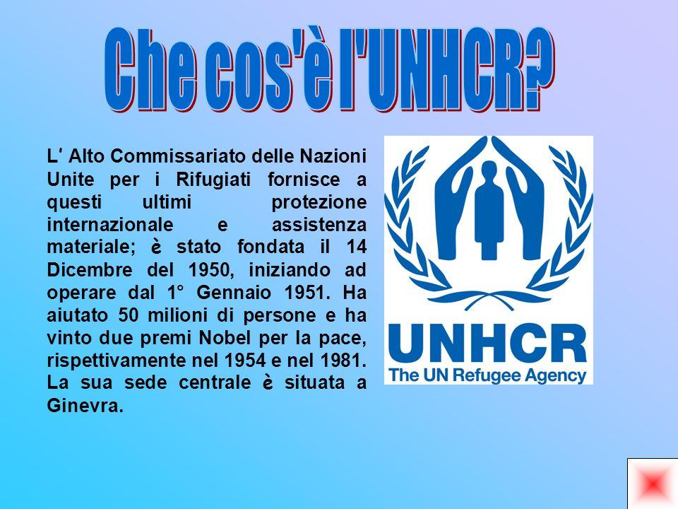 L Alto Commissariato delle Nazioni Unite per i Rifugiati fornisce a questi ultimi protezione internazionale e assistenza materiale; è stato fondata il 14 Dicembre del 1950, iniziando ad operare dal 1° Gennaio 1951.
