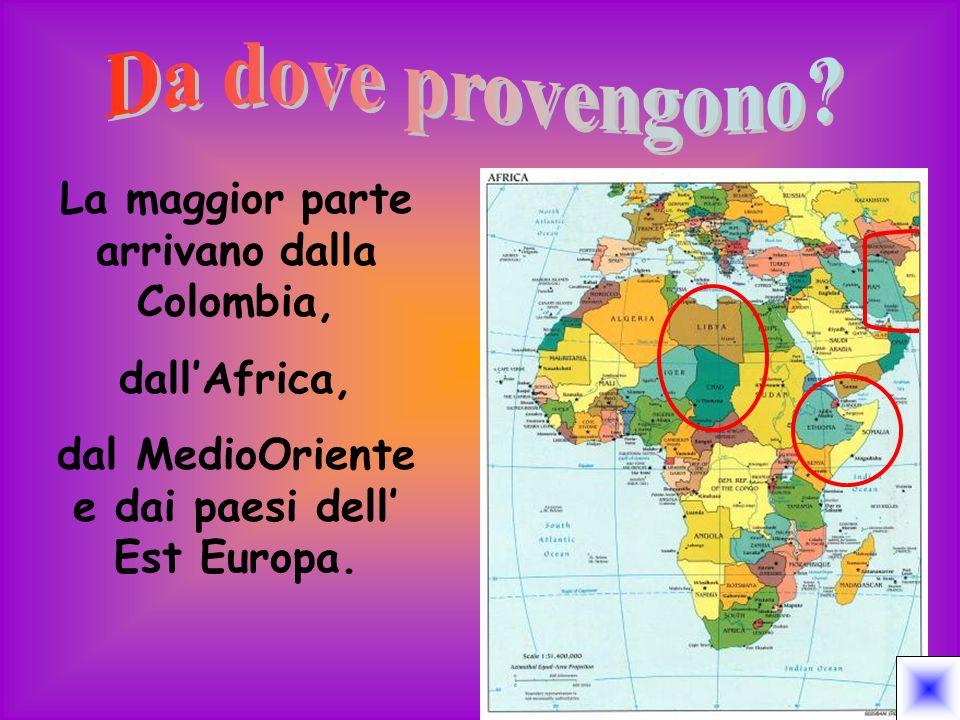 Molti dei rifugiati arrivano in Italia con mezzi di fortuna affrontando i duri climi africani e attraversando il Sahara.