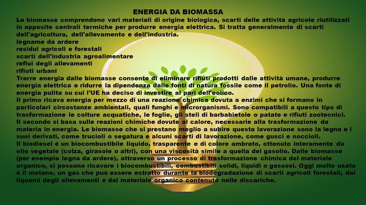 ENERGIA DA BIOMASSA Le biomasse comprendono vari materiali di origine biologica, scarti delle attività agricole riutilizzati in apposite centrali term