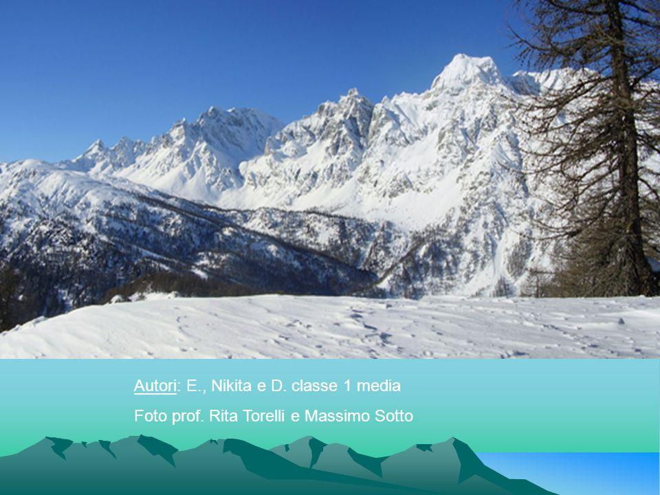 Autori: E., Nikita e D. classe 1 media Foto prof. Rita Torelli e Massimo Sotto