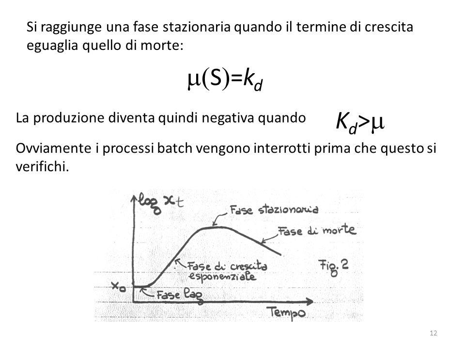 Si raggiunge una fase stazionaria quando il termine di crescita eguaglia quello di morte: S =k d La produzione diventa quindi negativa quando K d > Ov