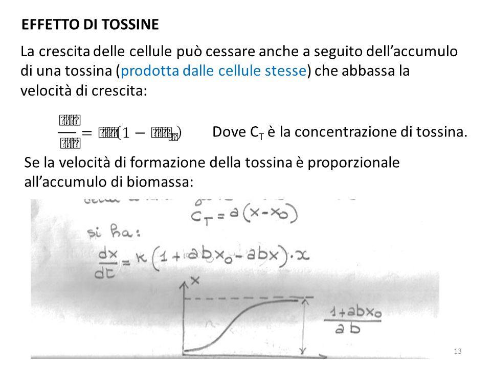 EFFETTO DI TOSSINE La crescita delle cellule può cessare anche a seguito dellaccumulo di una tossina (prodotta dalle cellule stesse) che abbassa la ve