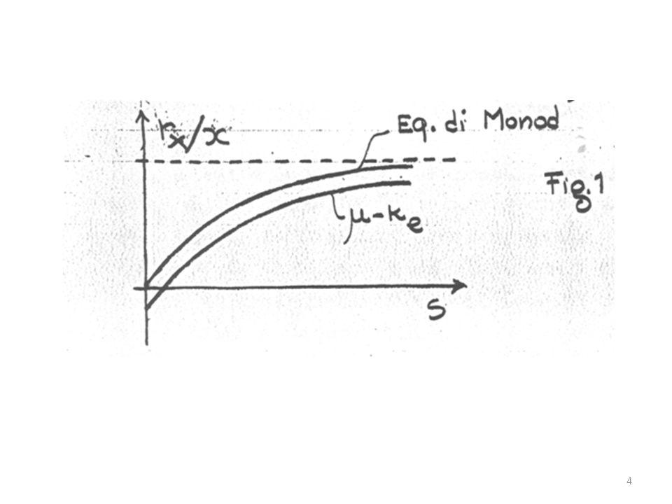 CRESCITA DELLA MASSA CELLULARE IN UNA COLTIVAZIONE DISCONTINUA La crescita della massa cellulare in un ambiente delimitato come quantità di substrato organico e sali nutritivi ha un andamento nel tempo come riportato in figura: 5