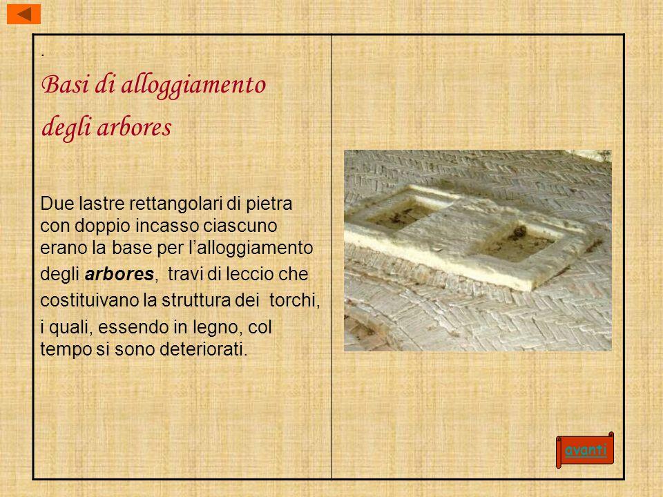 . Basi di alloggiamento degli arbores Due lastre rettangolari di pietra con doppio incasso ciascuno erano la base per lalloggiamento degli arbores, tr