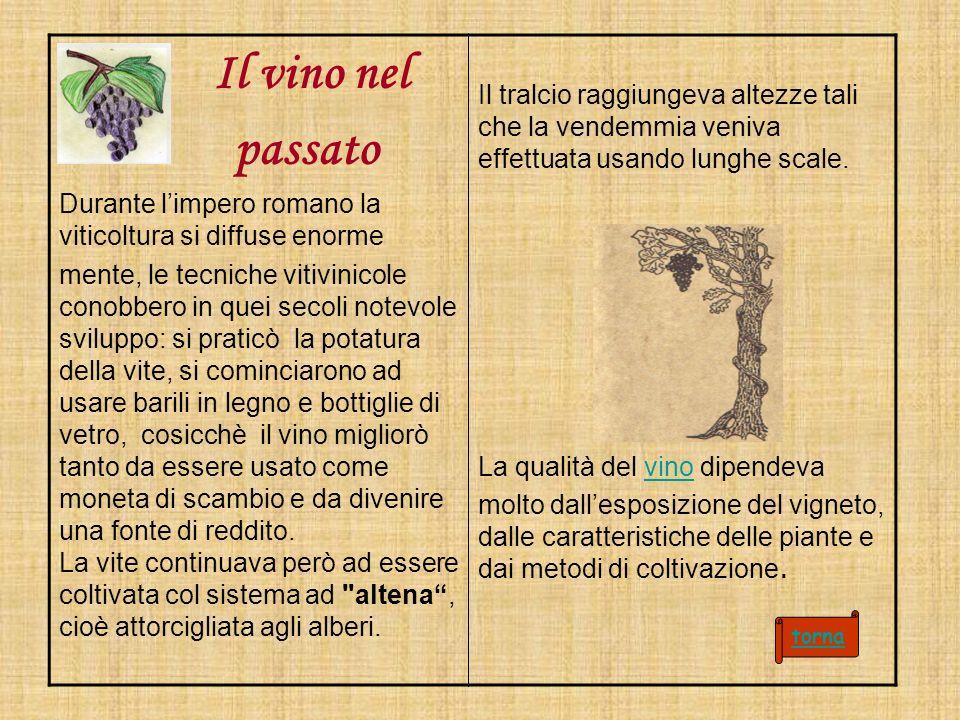 Il vino nel passato Durante limpero romano la viticoltura si diffuse enorme mente, le tecniche vitivinicole conobbero in quei secoli notevole sviluppo