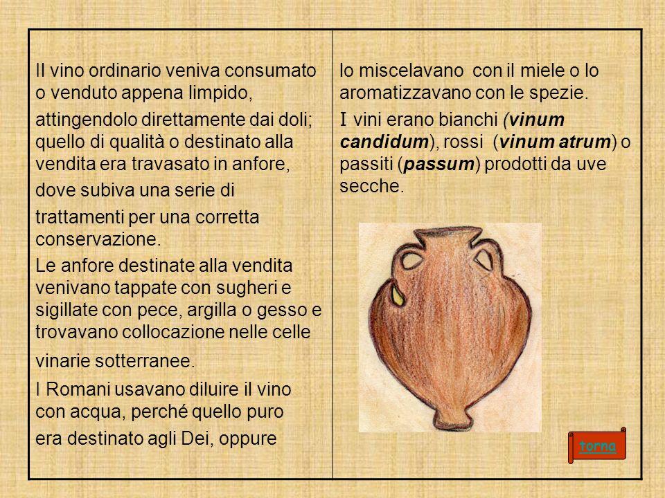 Il vino ordinario veniva consumato o venduto appena limpido, attingendolo direttamente dai doli; quello di qualità o destinato alla vendita era travasato in anfore, dove subiva una serie di trattamenti per una corretta conservazione.