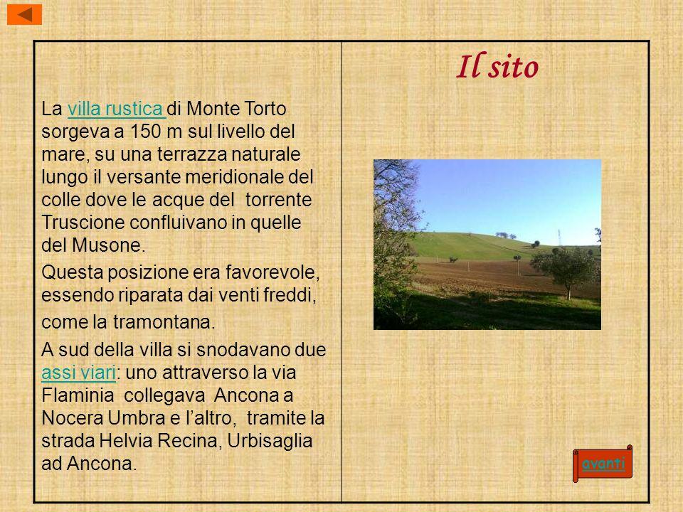 La villa rustica di Monte Torto sorgeva a 150 m sul livello del mare, su una terrazza naturale lungo il versante meridionale del colle dove le acque d