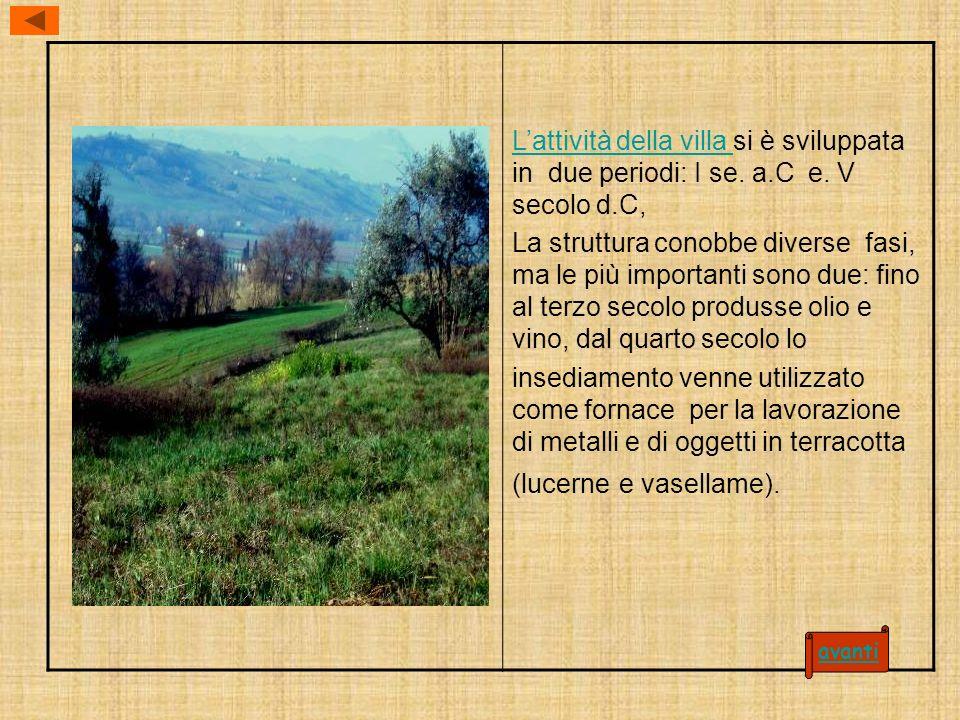 Lattività della villa Lattività della villa si è sviluppata in due periodi: I se.