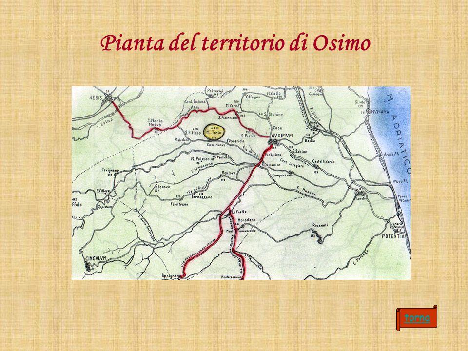 Pianta del territorio di Osimo torna