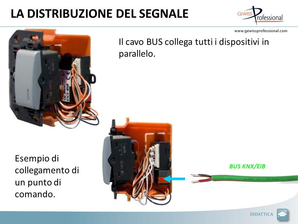 LA DISTRIBUZIONE DEL SEGNALE BUS KNX/EIB Il cavo BUS collega tutti i dispositivi in parallelo.