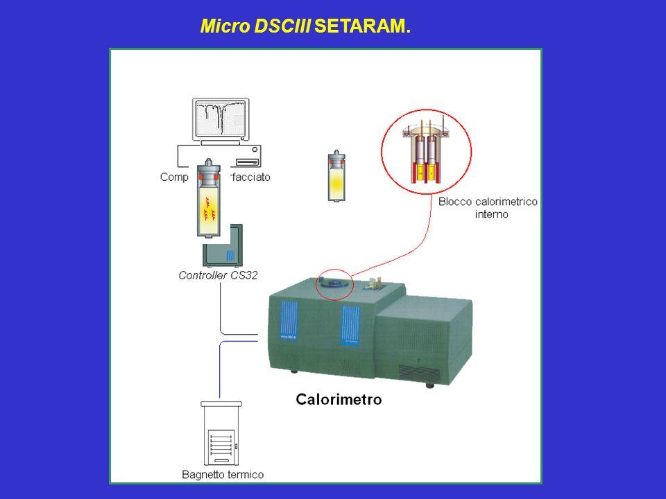 Micro DSCIII SETARAM.