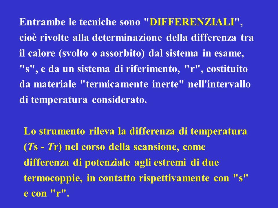 CALORIMETRIA DIFFERENZIALE A SCANSIONE (DSC)