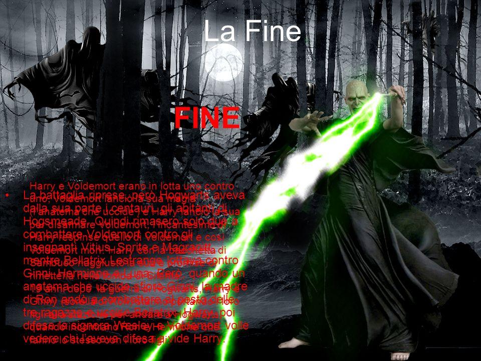 La Fine La battaglia riprese, però Hogwarts aveva dalla sua parte i centauri, gli abitanti di Hogsmeade. Quindi rimasero solo due a combattere Voldemo