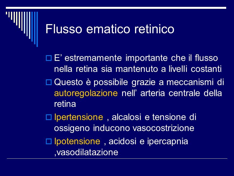Flusso ematico retinico E estremamente importante che il flusso nella retina sia mantenuto a livelli costanti Questo è possibile grazie a meccanismi d