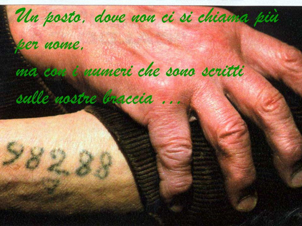 Un posto, dove non ci si chiama più per nome, ma con i numeri che sono scritti sulle nostre braccia …