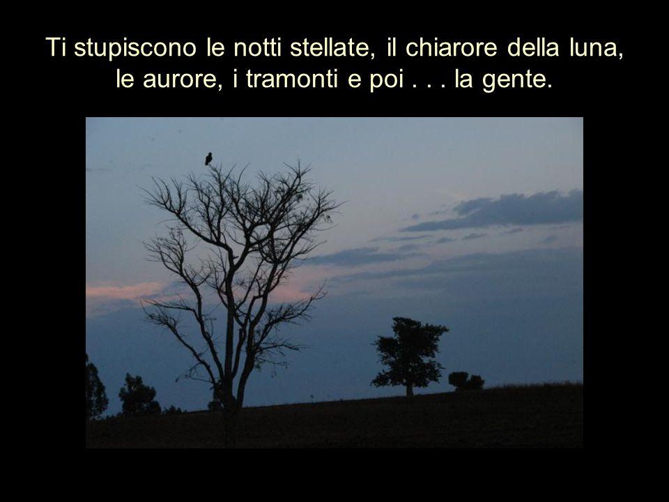 Ti stupiscono le notti stellate, il chiarore della luna, le aurore, i tramonti e poi... la gente.
