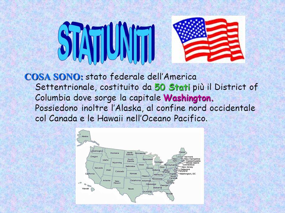COSA SONO: 50 Stati Washington.