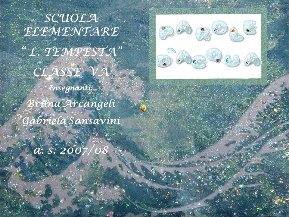 SCUOLA ELEMENTARE L. TEMPESTA CLASSE VA Insegnanti: Bruna Arcangeli Gabriela Sansavini a. s. 2007/08