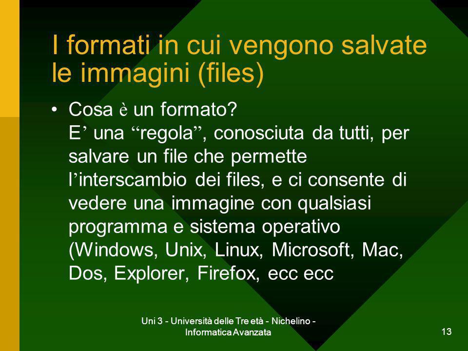 Uni 3 - Università delle Tre età - Nichelino - Informatica Avanzata 13 I formati in cui vengono salvate le immagini (files) Cosa è un formato? E una r