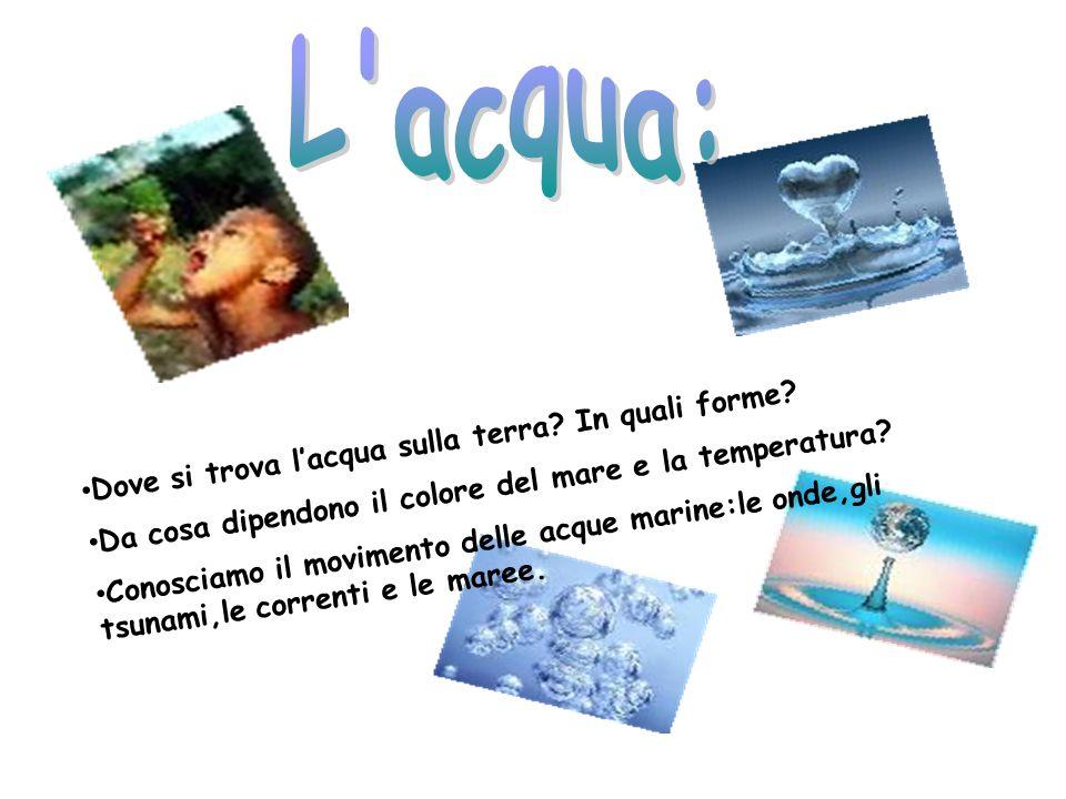 - Gli oceani e i mari contengono la maggior parte dellacqua presente sulla Terra.