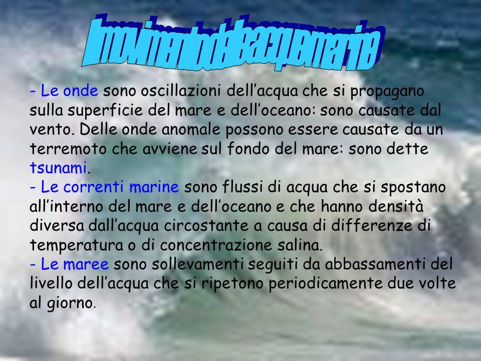 - Le onde sono oscillazioni dellacqua che si propagano sulla superficie del mare e delloceano: sono causate dal vento. Delle onde anomale possono esse