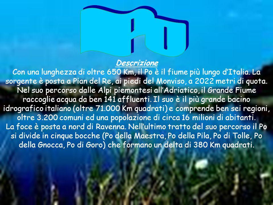 Descrizione Con una lunghezza di oltre 650 Km, il Po è il fiume più lungo dItalia. La sorgente è posta a Pian del Re, ai piedi del Monviso, a 2022 met