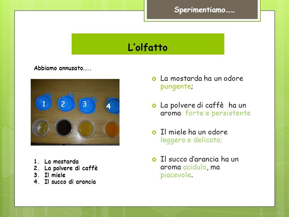 Lolfatto La mostarda ha un odore pungente; La polvere di caffè ha un aroma forte e persistente Il miele ha un odore leggero e delicato; Il succo darancia ha un aroma acidulo, ma piacevole.