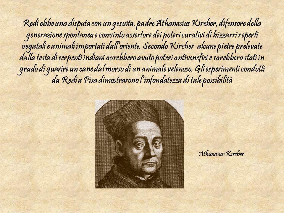 Redi ebbe una disputa con un gesuita, padre Athanasius Kircher, difensore della generazione spontanea e convinto assertore dei poteri curativi di bizz