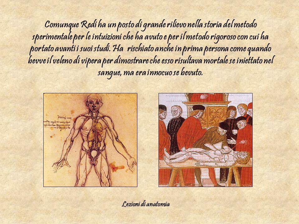 Comunque Redi ha un posto di grande rilievo nella storia del metodo sperimentale per le intuizioni che ha avuto e per il metodo rigoroso con cui ha po