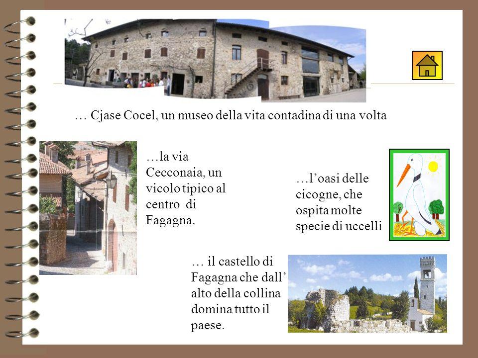 A Fagagna, oltre alla scuola …la via Cecconaia, un vicolo tipico al centro di Fagagna.