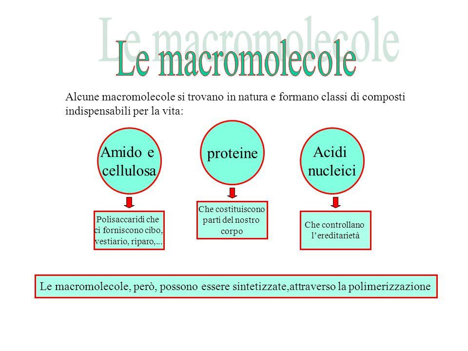 Alcune macromolecole si trovano in natura e formano classi di composti indispensabili per la vita: Amido e cellulosa Polisaccaridi che ci forniscono c