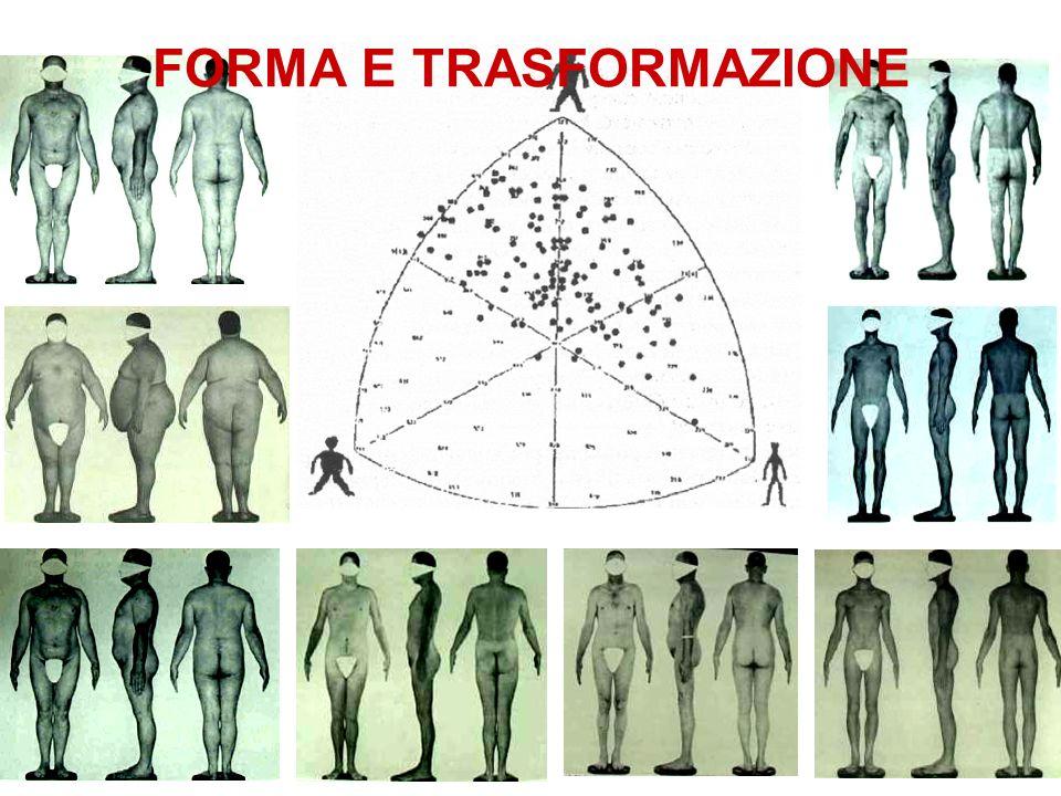 FORMA E TRASFORMAZIONE